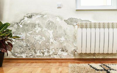 Cómo quitar la humedad de una habitación